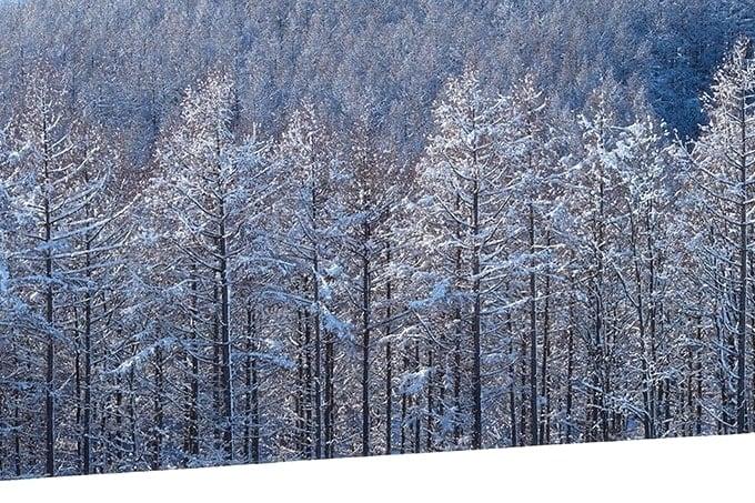 田部井淳子エベレスト女子初登頂「人生山あり谷あり」の本を読んだ。