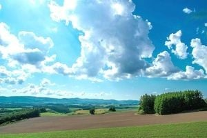 空に大きな雲が浮かんでいる大自然の風景。
