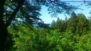 第2回外秩父トレイルラン43小林みかん山から秩父高原牧場まで