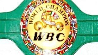 WBAとWBCのボクシング世界王者が過去最多8人になった!