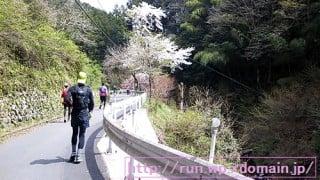第7回ハセツネ30k北沢峠登山口からトレイルラン開始。