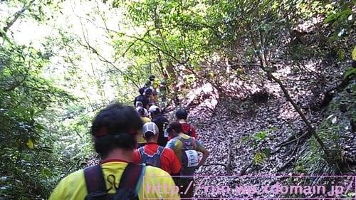 奥久慈トレイルレース山の中