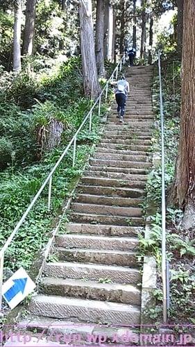 奥久慈トレイルレース階段。
