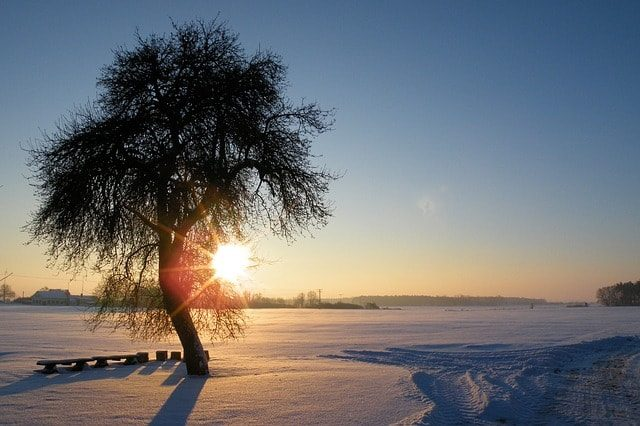 冬でも暖かマラソン・ランニング!ジャケット・インナーウェア紹介。
