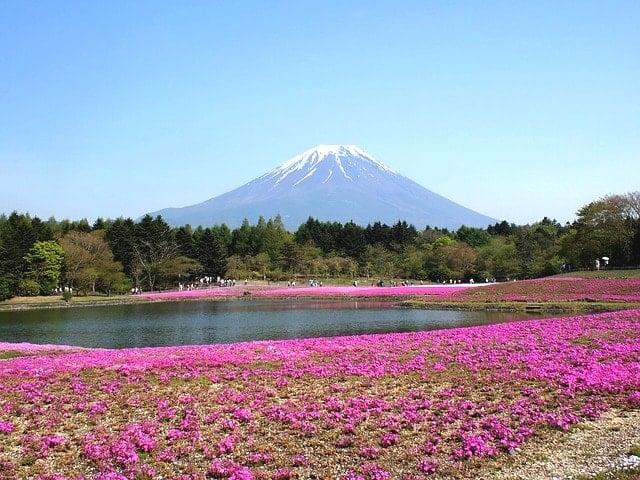 STY静岡から山梨まで92Km走った!大会前日の過ごし方と攻略体験記。
