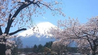 UTMF・STYの参加案内を準備して大会当日、富士山子どもの国で受付。