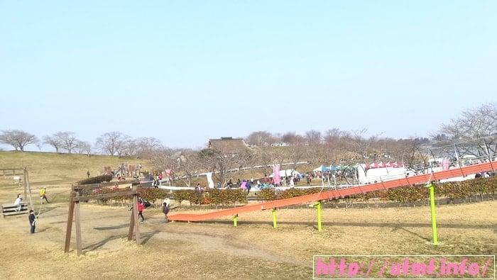 東北風土マラソン結果!コース上のステーキとフカヒレでサブ5達成。