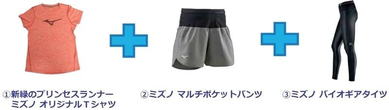 仙台国際ハーフマラソン完走方法!女性限定のプリンセスランナーとは?
